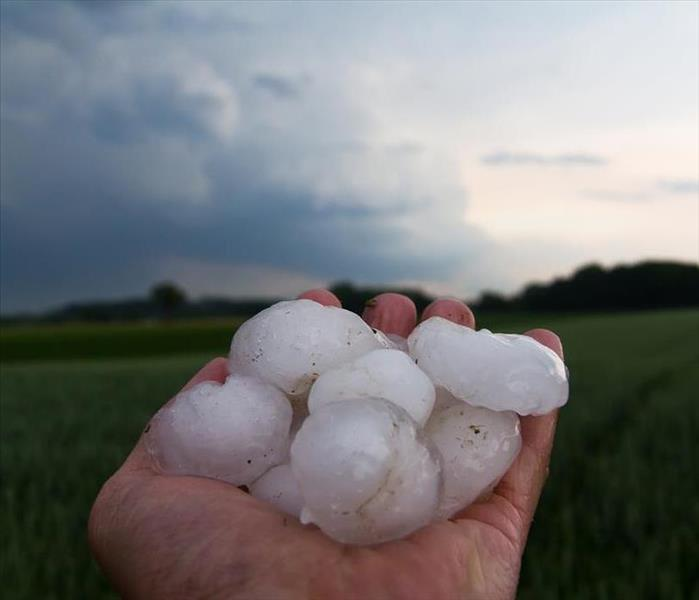 A hand holding several large hail stones with grass and trees and a storm cloud in the background.