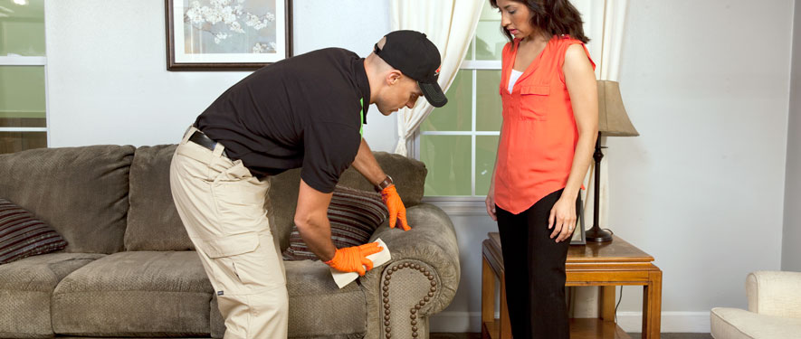 Cheyenne, WY carpet upholstery cleaning